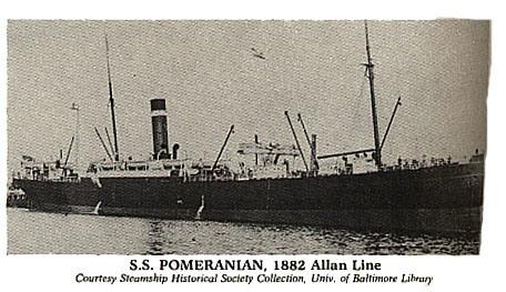 Pomerainian
