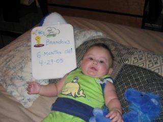 brandon 6 months old